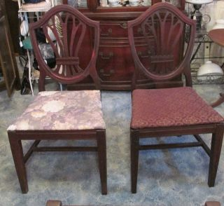 Shield Back Dining Room Chairs photo