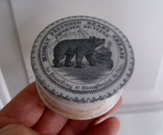 Antique,  Ceramic,  C1890 Bears Grease With Scrolled Border Jar Box Pot Lid photo