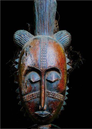 Old Tribal Baule Mask Coted ' Ivoire photo