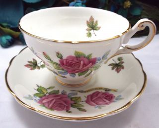 Regency Tea Cup Saucer Roses Vintage Porcelain Post 1940 England Multi - Color photo
