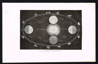 Earth ' S Movement Around The Sun,  Astronomy - 1874 Scarce Antique Print photo