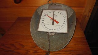 Vintage Hanging Scale With Tin Tray / Hanson Dairy Scale 60 Lbs.  Shubuta,  Miss. photo