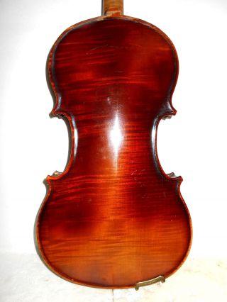 Antique Old Vintage 1 Pc Back Full Size Violin - photo