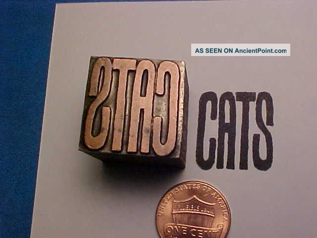 Cats Sign Kittens Kittycats Domestic Pets Wild Exotic Letterpress Printers Cut Binding, Embossing & Printing photo