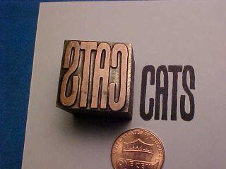 Cats Sign Kittens Kittycats Domestic Pets Wild Exotic Letterpress Printers Cut photo