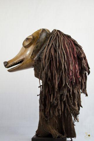 Chokwe Unusual Animal African Mask - Congo Drc photo