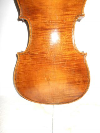 Very Old Vintage Antique 1800s 1 Pc Back Full Size Violin - photo
