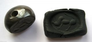 Circa.  400 A.  D Sassanian Empire Zoomorphic Pirite Dome Seal - Boar Detail photo