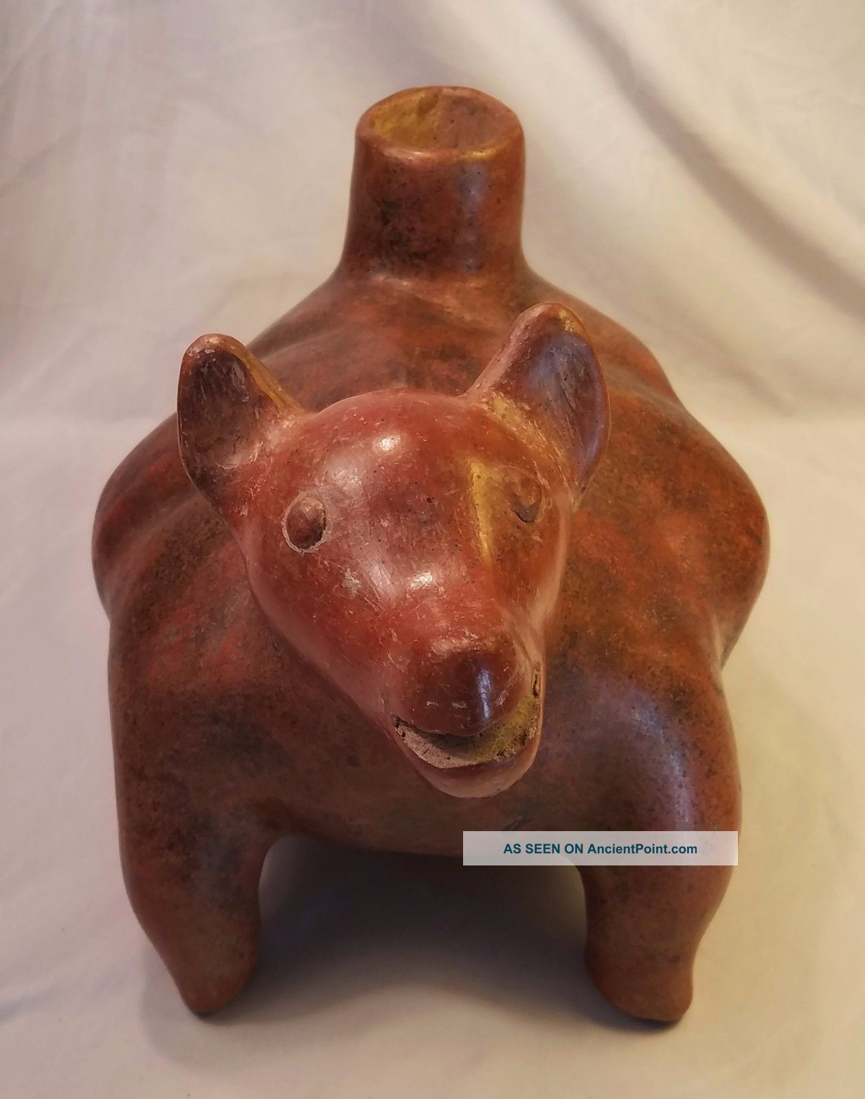 Large Pre - Columbian West Mexican Colima Perro Dog Ceramic Vessel Statue 200bc The Americas photo