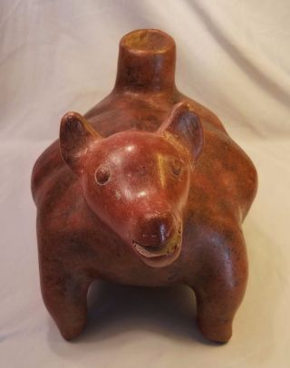 Large Pre - Columbian West Mexican Colima Perro Dog Ceramic Vessel Statue 200bc photo