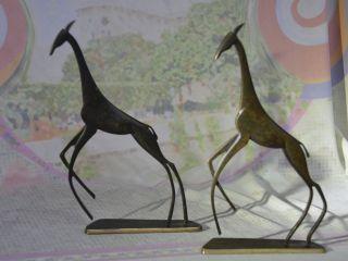 Hagenauer,  Giraffes.  Wien,  Vienna,  Werkstätten,  1940s,  & Richard Rohac Giraffe photo