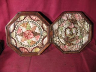 Antique 19th C Shellwork Double Sailors Valentine In Octagonal Case photo
