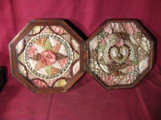 Antique 19th C Shellwork Double Sailors Valentine In Octagonal Case photo