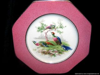Antique Wedgwood Cabinet Plate Chelsea Vienna Birds C.  1908 Unicorn Mark photo