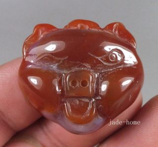 Fashion Natural Red Agate Carving Lovely Pighead Statue Pendant photo