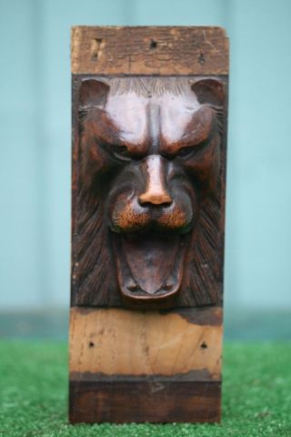 Mid 19thc Gothic Wooden Oak Lion Head Corbel With Intricate Carving C1860 photo
