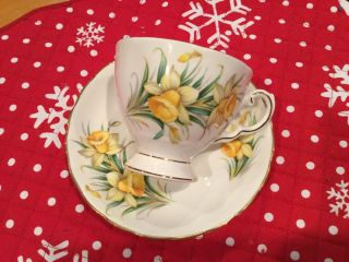 Royal Tuscan Birthday Flowers March's Daffodil Teacup And Saucer photo