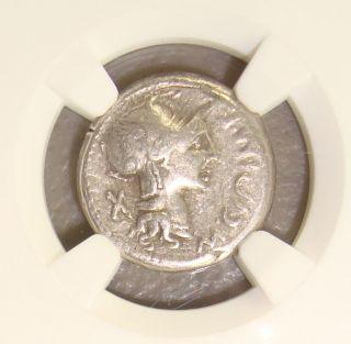 115/4 Bc M.  Cipius M.  F.  Ancient Roman Republic Silver Denarius Ngc Vf photo