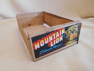 Old Primitive Mountain Lion Colorado Pears Wooden Crate photo