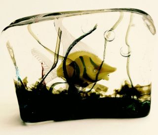 Cenedese Murano Aquarium 1 Designed By Ricardo Licata.  Yellow Fish.  Venini Era photo