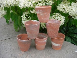 6 Old Vintage Hand Thrown Long Tom Terracotta Plant Pots 4