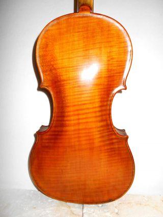 Old Vintage Antique 1800s 1 Pc Back Full Size Violin - photo