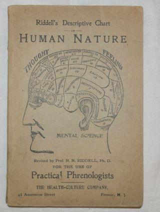 1896 Riddell ' S Descriptive Chart Human Nature Phrenology Mental Health photo