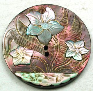 Antique Carved Shell Button Iridescent Flowers On Etching W/ Luster Accents 1