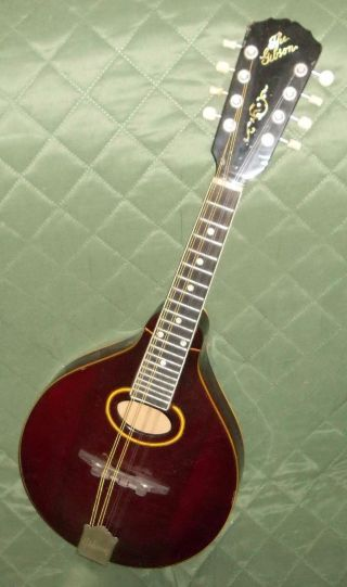 Estate Vintage The Gibson Mandolin A4 Or A3 ? 1915 - 1920 ' S? Color And photo