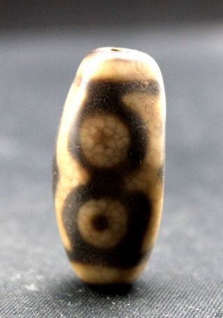 36 16 Mm Oriental Vintage Unusual Tibetan Old 3 Eyes Dzi Bead photo