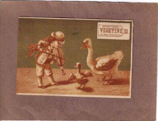 Boy Plays Violin For Ducks Vegetine Quack Medicine Adv Trade Card C1880 photo