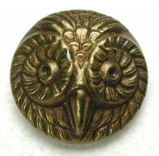 Antique Brass Button Detailed Owl Face Design - 5/8