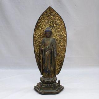 F457: Japanese Old Colored Wood Carving Buddhist Statue Amitabha W/gyoku - Gan photo