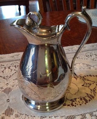 Antique Silver Plate Syrup Pitcher Berry Finial Middletown Plate Co photo