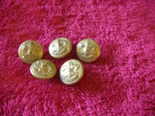 1911 Antique 5 Boy Scout Brass Uniform Buttons