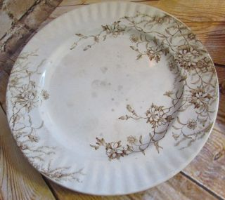 Antique Transferware Gl Ashworth & Bros Jersey 2 Ironstone Plates Brown Flowers photo