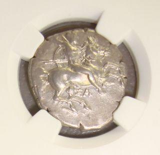 Ca.  325 Bc Calabria,  Taras Ancient Greek Silver Didrachm Ngc Choice Xf 4/5 4/5 photo