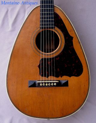 Antique Cittern Guitar By L.  Sutz,  Cincinnati C.  1900 photo