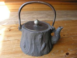 Japanese Antique Cicada Iron Tea Kettle Tetsubin Teapot Chagama 5741 photo