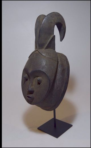 A Fine Old Baule Horned Mask,  African Mask.  African Art photo