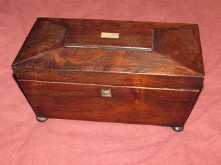 Antique Rosewood Sarcophagus Treen Wood Tea Caddy C1830 photo