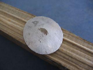 Large Druids Ancient Celitic Silver Bronze Button 400 - 200 B.  C. photo
