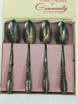 Community Silver Plate Demitasse Spoons White Orchid photo