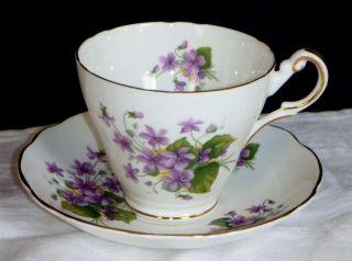 Vintage Regency English Bone China Teacup,  Saucer Violets Gold Trim photo