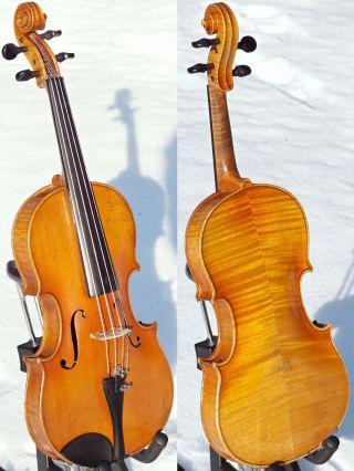 Fine Antique Czech Violin By Josef Lidl,  Brno (pre - Ww2).  Tone,  Good Build photo