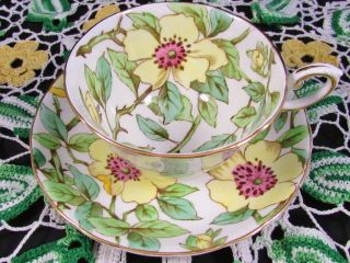 Tuscan Yellow Dogwood Chintz Floral Tea Cup And Saucer photo