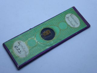 Antique Paper Covered Microscope Slide - Vanessa Atalanta Butterfly Wing - Ref10 photo