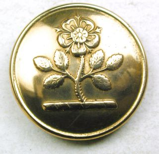 Antique Brass Livery Button - Heraldic Rose Dseign - Jennens - 15/16