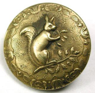 Antique Brass Sporting Button Detailed Squirrel Design - 7/8