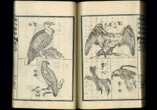 Hakubutsu Shinpen Yakukai Japanese Woodblock Print Textbook Western Science 1874 photo